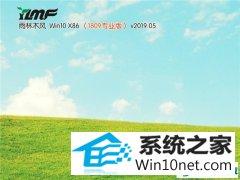 雨林木风 Win10 x86(1809专业版)v2019.05